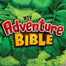 Niv Adventure Bible Bible Apps For Study Amp Devotion